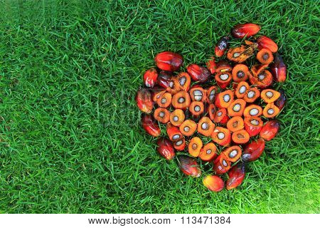 love shapes