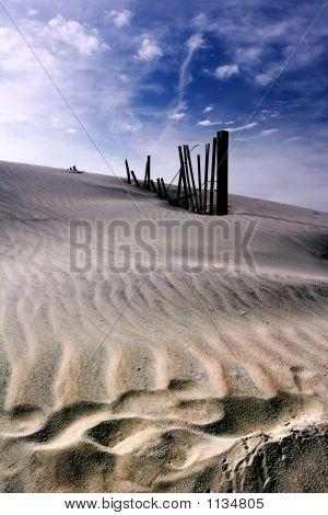 Dramatic Dune