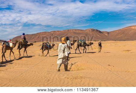 Camel Caravan Going Through The Desert, Morocco