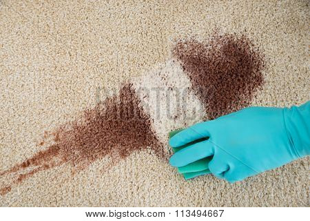Hand Cleaning Red Wine Fallen On Rug