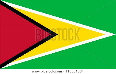 Standard Proportions For Guyana Flag