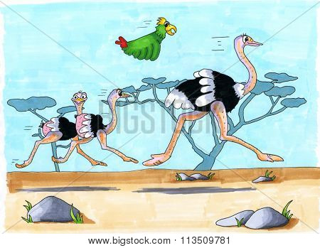 Cartoon of hand drawn Ostriches running in nature landscape