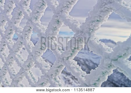 Fencing Mesh Being Frozen In Mountains In Winter
