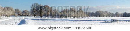 Winter's Perspective