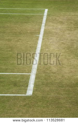 Tennis baseline
