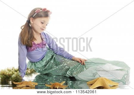 A beautiful little mermaid relaxed among starfish and seaweed, with a watery reflection.  On a white background.
