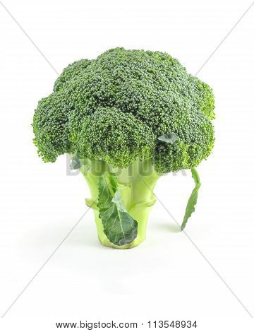 Broccoli Green Vegetable