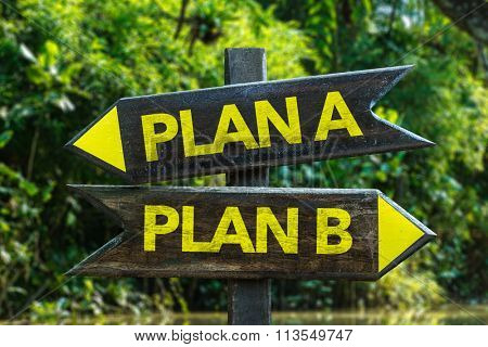 Plan A - Plan B signpost with forest background