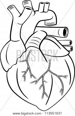 heart symbol illustration