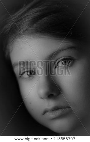 Monochrome Portrait Of Young Beauty
