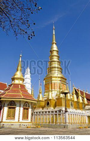 Sharp Architecture Golden