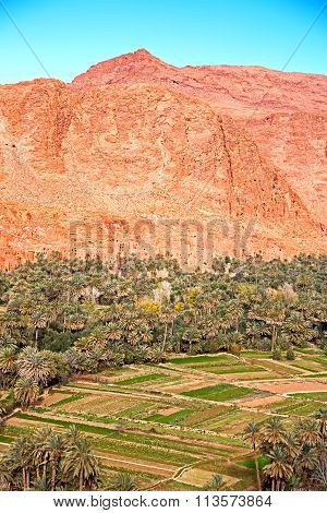 In Todra   Morocco Africa And  Village