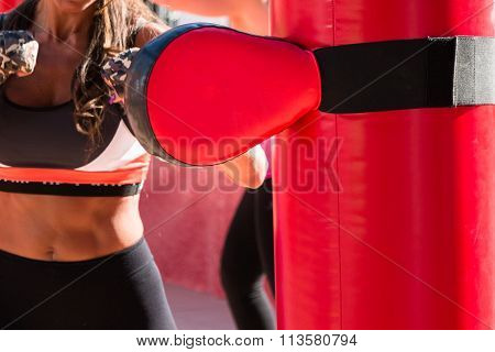 Young Girl And Red Punching Bags And Mitts, Boxing & Fitness