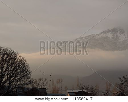 Misty morning in Kashmir valley