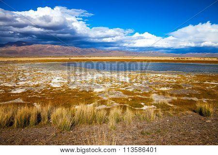 Lake In Bright Multi-colored Steppe
