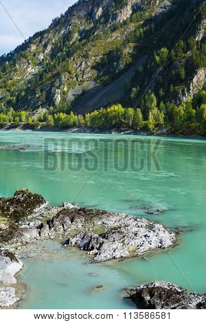 Rocks On The Turquoise River Bottom
