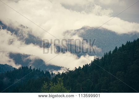 Cloudy Mountains forest beautiful landscape rainy moody weather