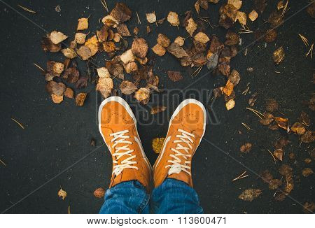 Feet sneakers walking on fall leaves Outdoor with Autumn season nature on background