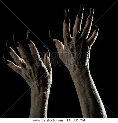 Old Female Hands With Long Nails