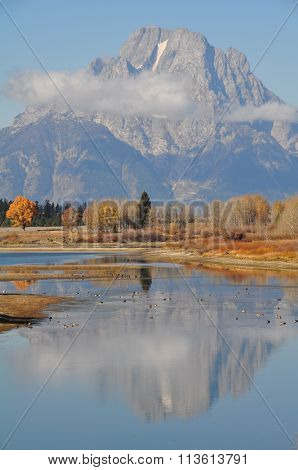 Grand Teton in mirror