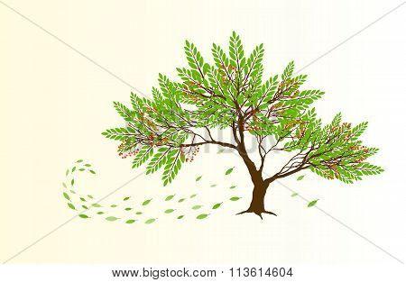 Spring Abstract Tree With Red Berries