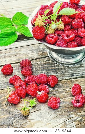 Ripe Juicy Raspberries