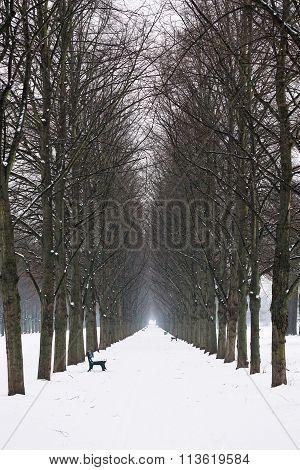 empty alley in winter