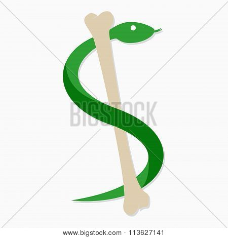 Vector snake and bone logo template.  Viper symbol or icon
