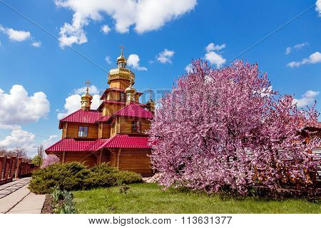 Kriviy Rih, Ukraine. Wooden Orthodox Church And A Purple Blossoming Magnolia Tree