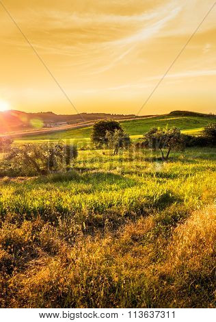 Tuscan Countryside Landscape