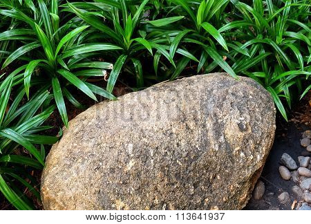 Brown Stone On The Garden With Green Grass