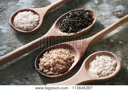 RICE VARIETY : BROWN, WILD, BASMATI, CAROLINA
