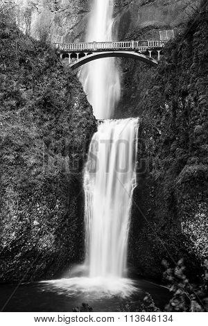 monochrome view of multnomah falls in oregon