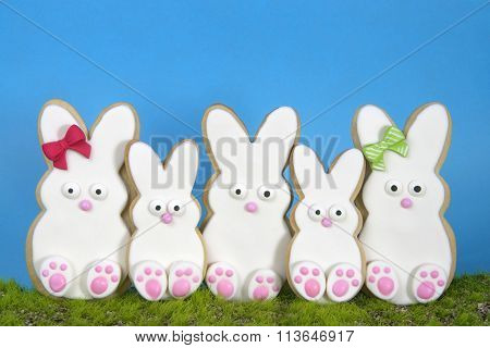 bunny sugar cookies decorated sitting up in grass blue background