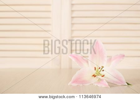 Lily Flower On Wooden Table