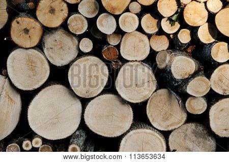 stacked logs in lumber field