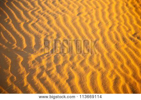 Africa The Brown Sand Dune In   Sahara   Desert Line