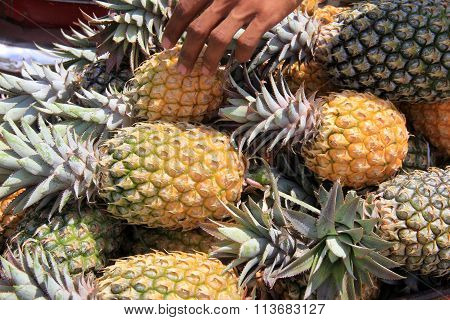 Man's hand placing pineapples out for sale