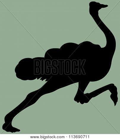 animal running ostrich silhouette vector
