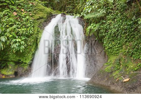 Beautiful waterfall in a rainforest. Cascades aux Ecrevisses