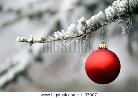 Red Ornament 5