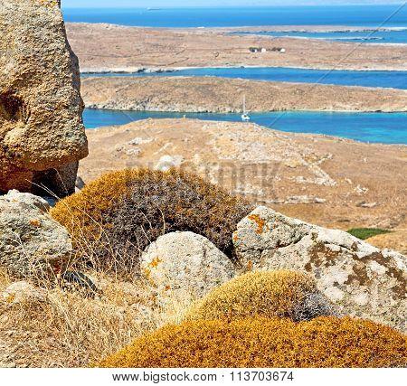 Antique  In Delos Greece The Historycal Acropolis And Old Ruin Site