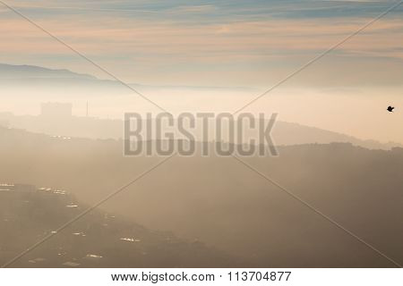 Foggy Morning In The Bay Of Trieste