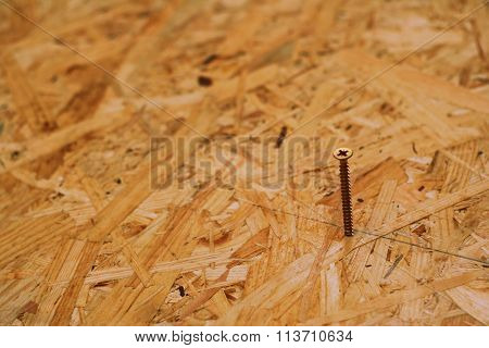 Woodscrew In The Oriented Strand Board