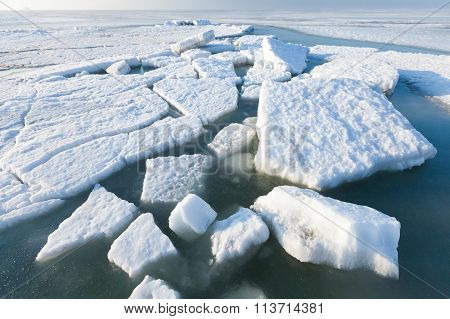Ice Hummocks Swim In The Sea