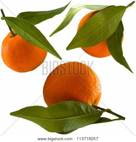 Sweet Ripe Tangerine Isolated On A White Background.