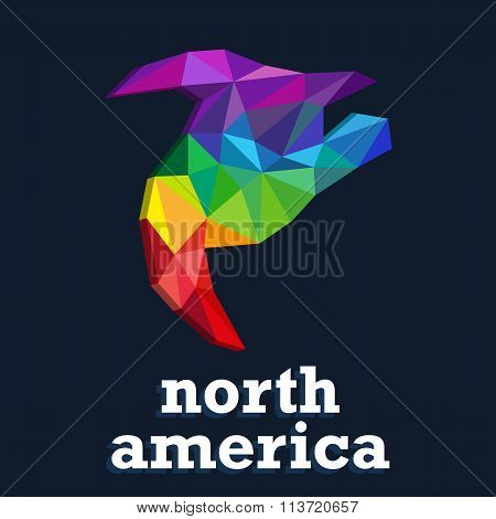 Triangle Pattern Continent