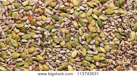 Miscellaneous Seeds Texture