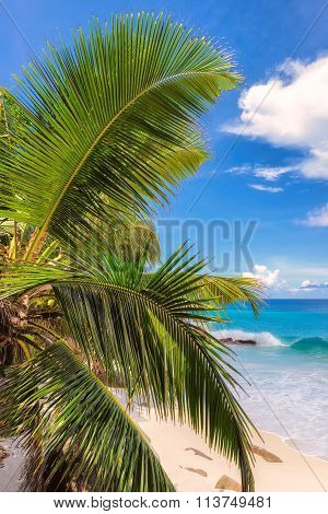 Paradise beach on tropical island Mahé in Seychelles