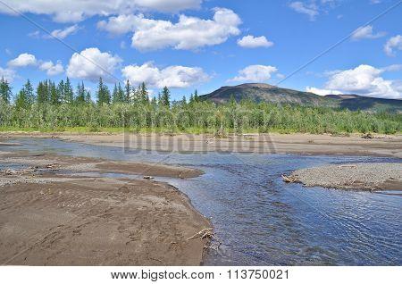 Landscape Of The River With Sandbanks.
